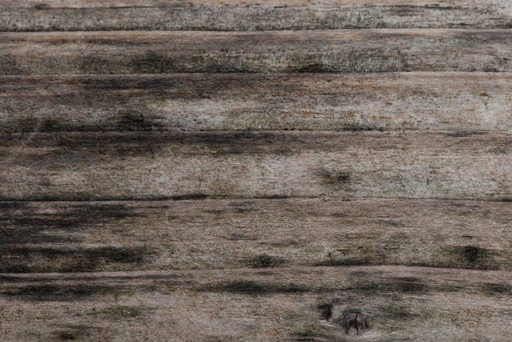 Free Giveaway: Hochwertige Texturen von Terragon.de