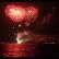 Wenn der Himmel brennt: Steinhuder Meer in Flammen 2019